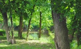Little Muskingum River